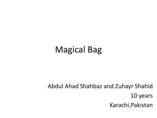 Magical Bag