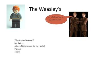 Who are the Weasley's?  Family tree Jobs and What  school did they go to?  Pictures credits