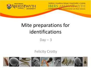 Mite preparations for identifications