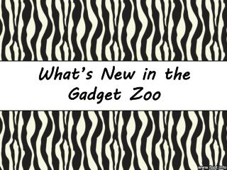 What's  New in  the Gadget  Zoo