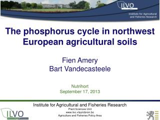 The phosphorus cycle in n orthwest  European agricultural soils