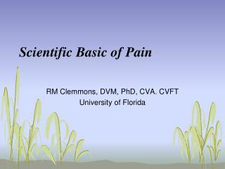 Scientific Basic of Pain