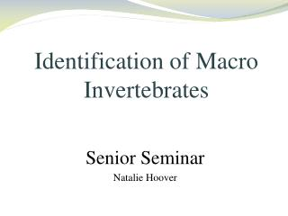Identification of Macro Invertebrates