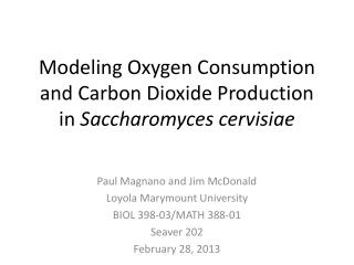 Modeling Oxygen Consumption and Carbon Dioxide Production in  Saccharomyces  cervisiae