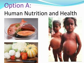 Option A: Human Nutrition and Health