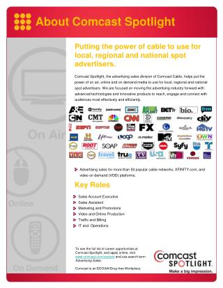 Putting the power of cable to use for local, regional and national  spot advertisers .
