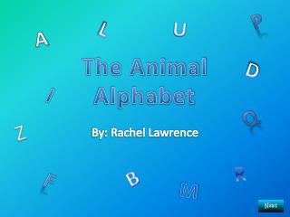 The Animal Alphabet