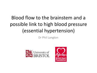 Blood flow to the brainstem and a possible link to high blood pressure (essential hypertension)