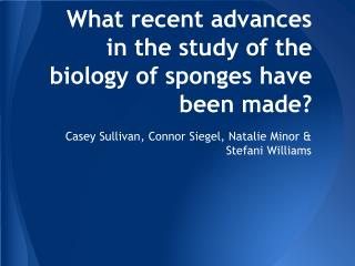 What recent advances in the study of the biology of sponges have been made?