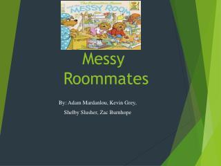 Messy Roommates