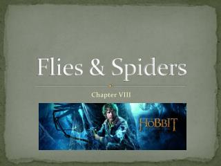 Flies & Spiders