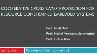 Cooperative cross-layer protection for resource constrained embedded systems