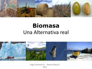 Biomasa Una Alternativa real
