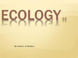 Ecology 14