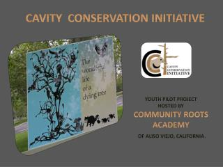 CAVITY  CONSERVATION INITIATIVE