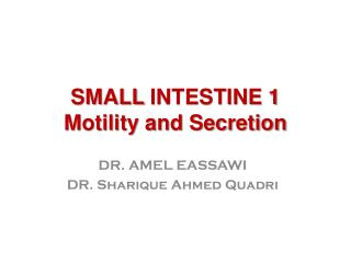 SMALL  INTESTINE 1 Motility and Secretion