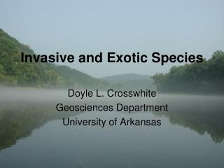 Invasive and Exotic Species