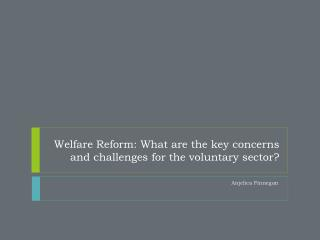 Welfare Reform: What are the key concerns and challenges for the voluntary sector?