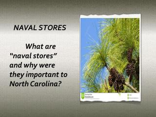 "NAVAL STORES 	What are ""naval stores"" and why were they important to North Carolina?"