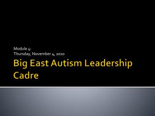 Big East Autism Leadership Cadre