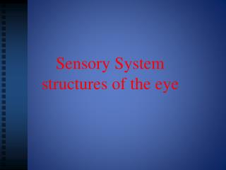 Sensory System  structures of the eye