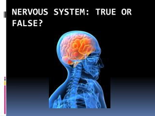 Nervous System: True or False?