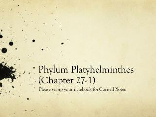 Phylum Platyhelminthes (Chapter 27-1)