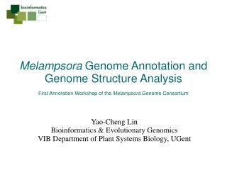Melampsora Genome Annotation and Genome Structure Analysis