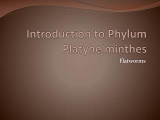 Introduction to Phylum  Platyhelminthes