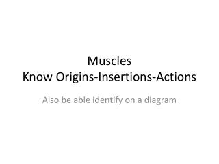 Muscles Know Origins-Insertions-Actions