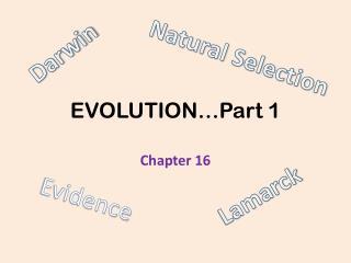 EVOLUTION…Part 1