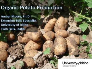 Organic Potato Production