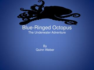Blue-Ringed Octopus The Underwater Adventure