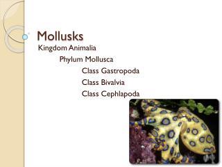 Mollusks
