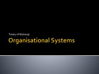 Organisational Systems