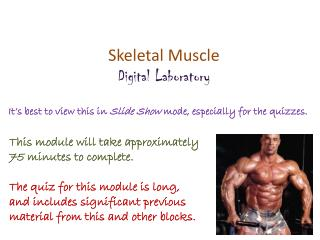 Skeletal Muscle Digital Laboratory