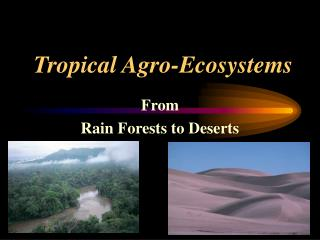 Tropical Agro-Ecosystems