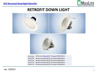 Retrofit Down Light