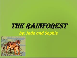 The Rainforest by: Jade and Sophie