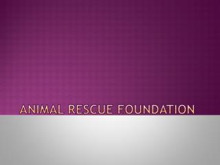 Animal Rescue Foundation