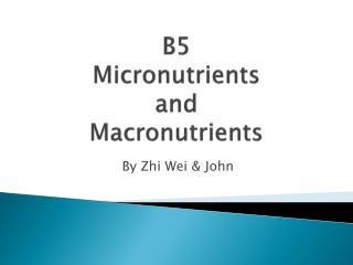 B5  Micronutrients  and  Macronutrients