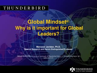 Global Mindset ®:  Why is it important for Global Leaders?
