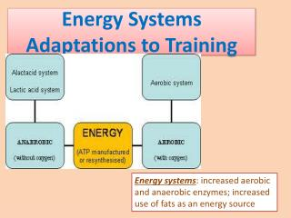 Energy Systems Adaptations to Training