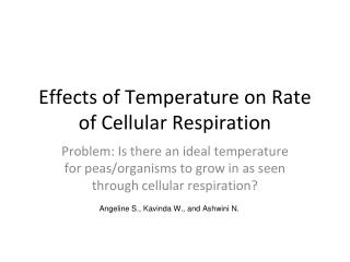 Effects of Temperature on Rate of Cellular Respiration