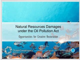 Natural Resources Damages under the Oil Pollution Act