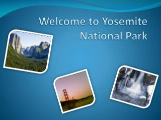 Welcome to Yosemite National Park