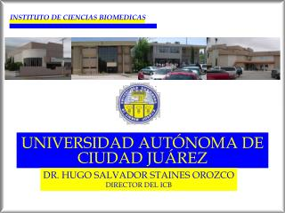 INSTITUTO DE CIENCIAS BIOMEDICAS