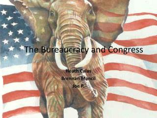 The Bureaucracy and Congress