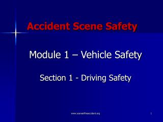 Accident Scene Safety
