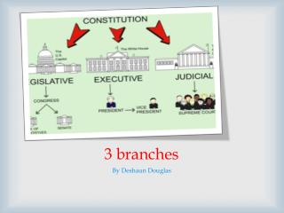 3 branches